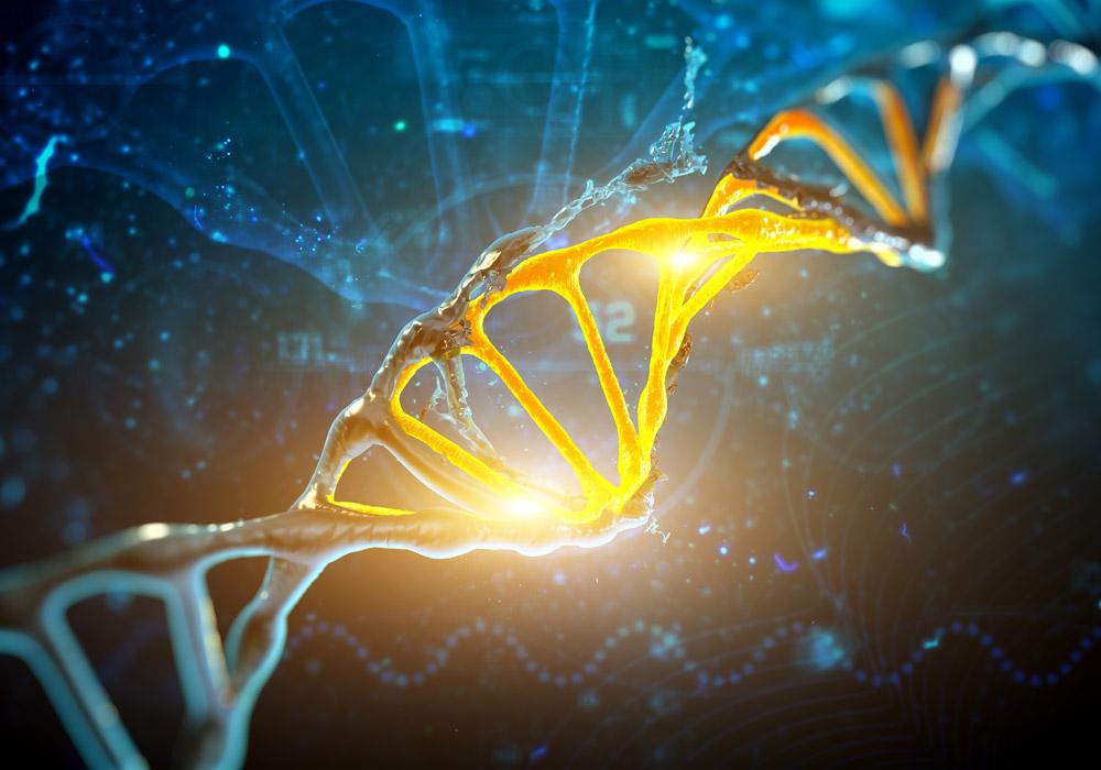 Vent'anni fa la prima mappatura del genoma umano